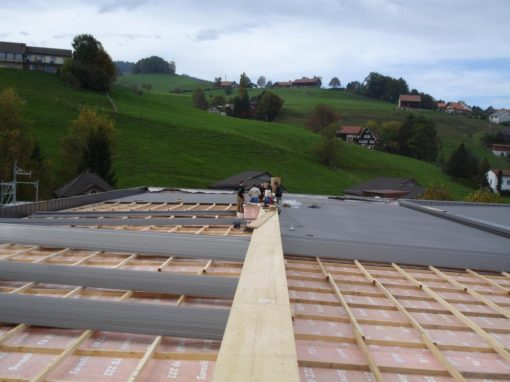 SEFAR Dachsanierung, Heiden
